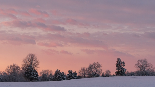 Manassas, virginia, va, nova, northern virginia, winter, snow, trees, early morning, manassas battlefield, national battlefield,