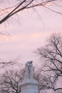 us capitol, peace monument, sunrise, bare trees, branches, framing, national mall, washington dc, congress, government