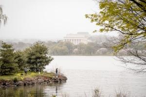 mt vernon trail, lincoln memorial, fishing, fisherman, potomac river, cherry blossoms, fog