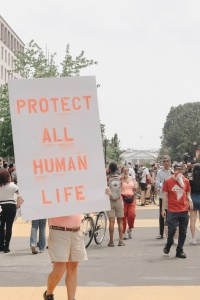 protestor, protests, signs, all lives matter, black lives matter, bam, white house, 16th street