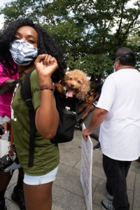 commitment march on washington, al sharpton walk, national action network, march, social justice, al sharpton, toy poodle, dogs, washington dc, tidal basin, martin luther king jr memorial, national mall
