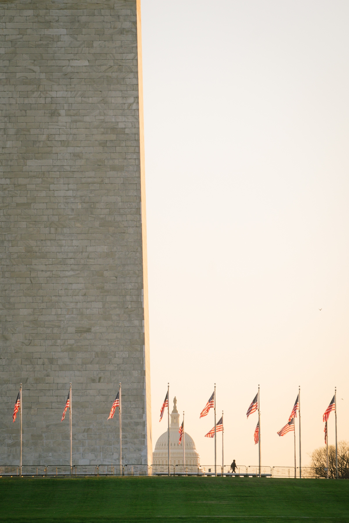 washington monument, american flags, early morning, sunrise, national mall, wwii memorial, world war ii memorial, us capitol dome