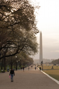 washington monument, washington dc, national mall, sunset, grass, street photography,